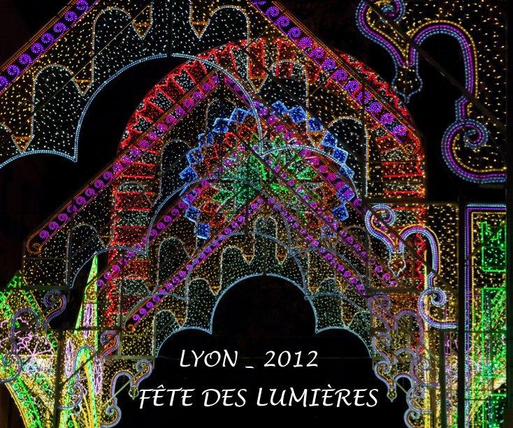 View LYON FÊTE DES LUMIÈRES 2012 by GUIDO DEHEUVELS