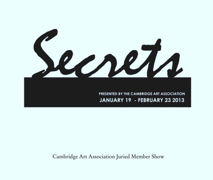 View Secrets by Cambridge Art Association Juried Member Show