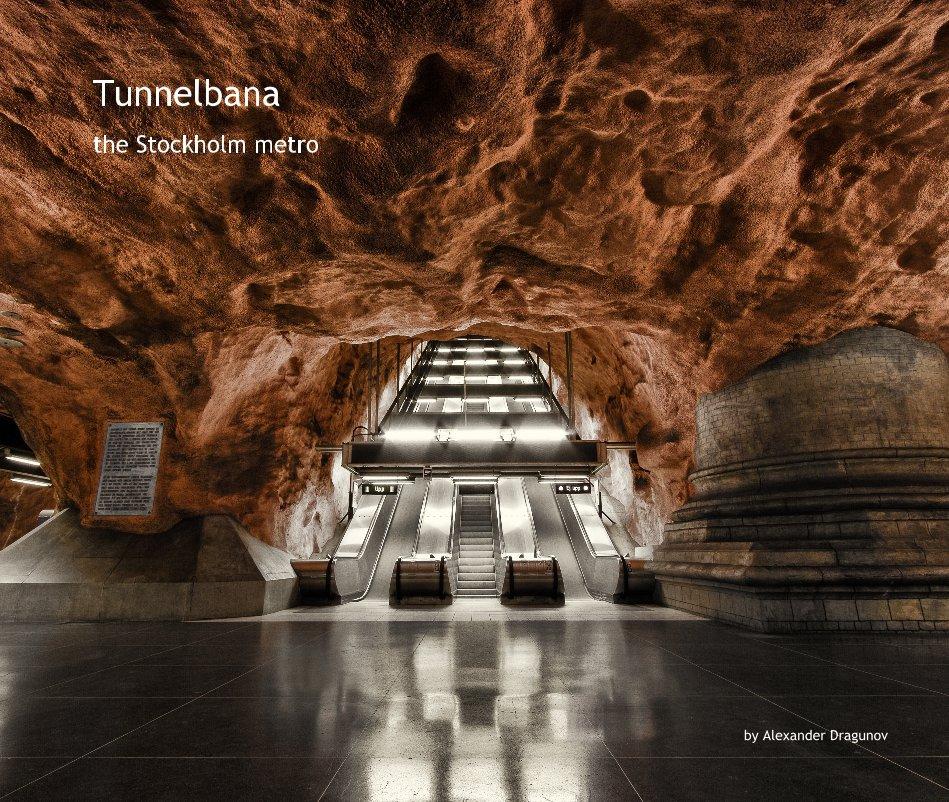 View Tunnelbana by Alexander Dragunov