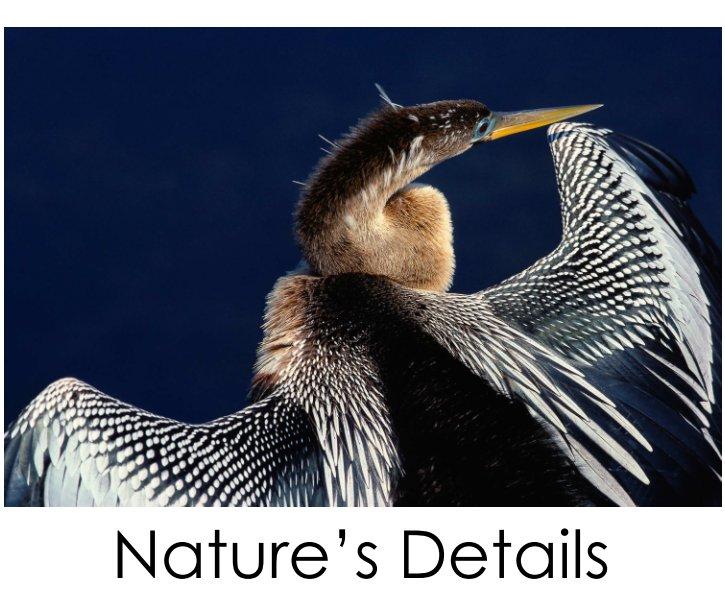 View Nature's Details: a portfolio by Douglas Gruenau