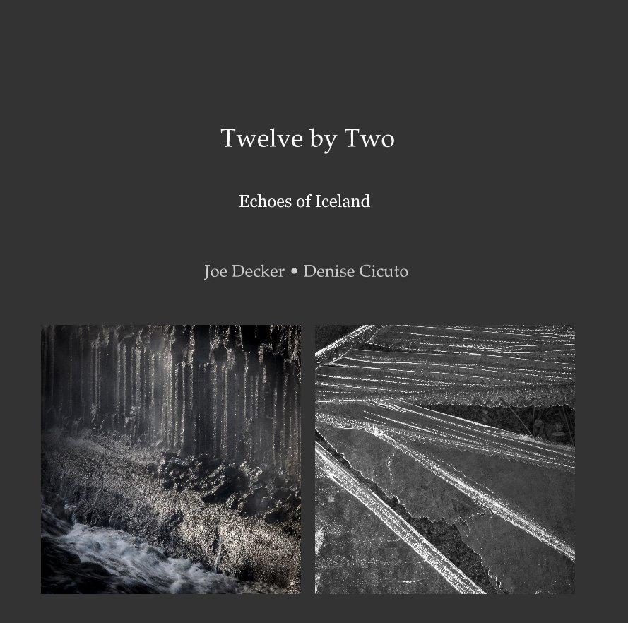 View Twelve by Two by Joe Decker • Denise Cicuto