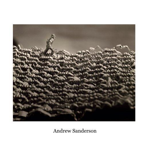 View Untitled (Portfolio) by Andrew Sanderson