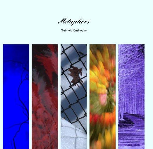 View Metaphors by Gabriela Casineanu
