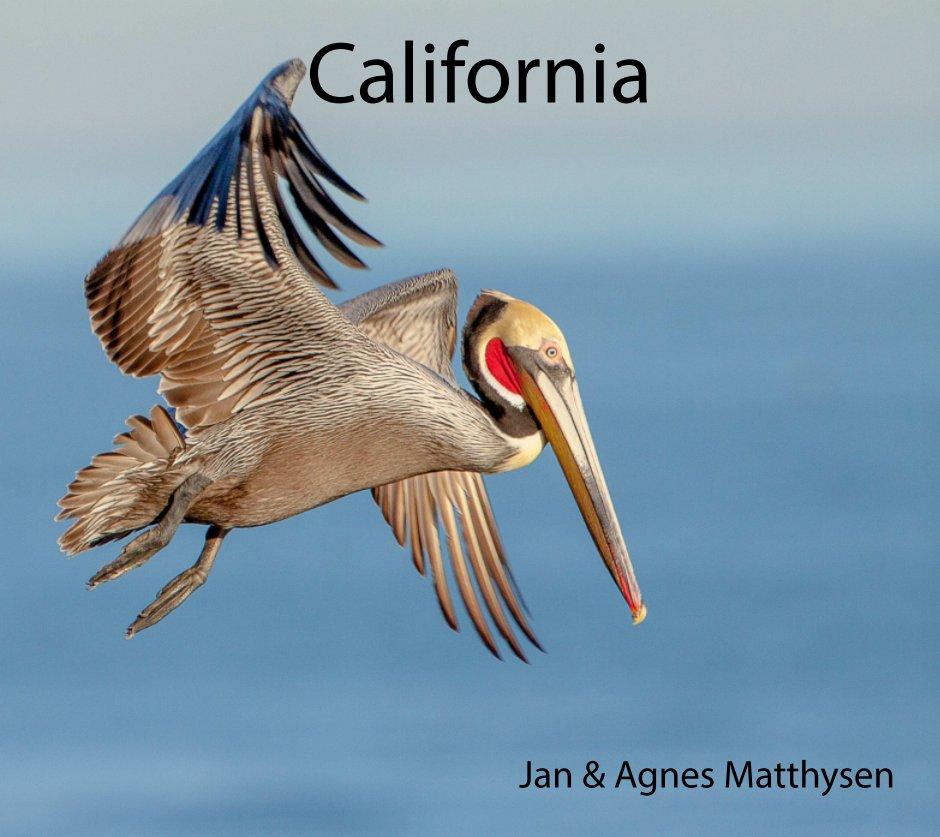 View California by Agnes & Jan Matthysen