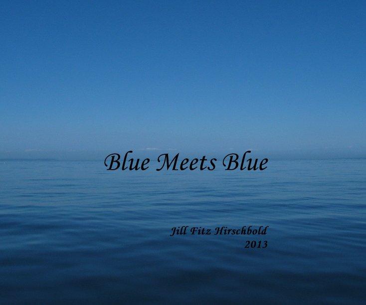 View Blue Meets Blue by Jill Fitz Hirschbold 2013