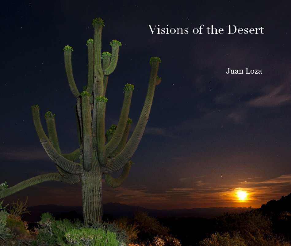 View Visions of the Desert by Juan Loza
