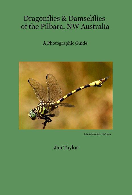 View Dragonflies & Damselflies of the Pilbara, NW Australia by Jan Taylor