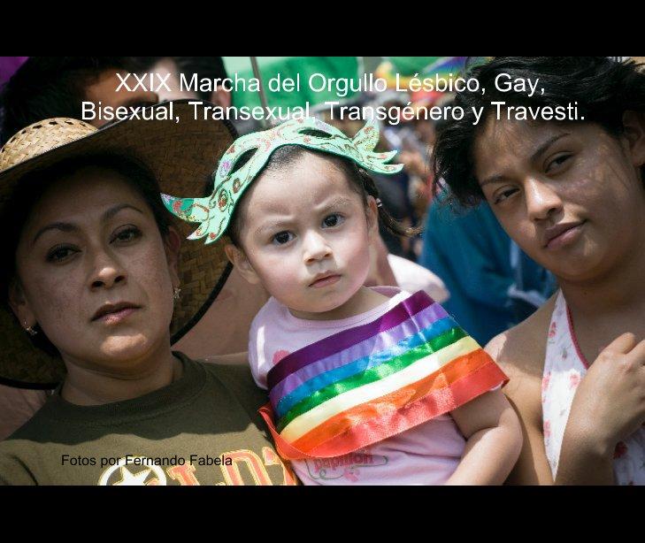 View XXIX Marcha del Orgullo Lésbico, Gay, Bisexual, Transexual, Transgénero y Travesti. by ferfabela