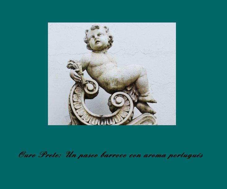 View OURO PRETO: Un paseo barroco con aroma portugués by Hernando Reyes