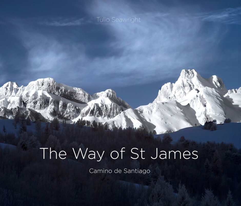 View The way of St James by Tulio Seawright