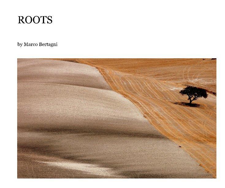 Visualizza ROOTS di Marco Bertagni