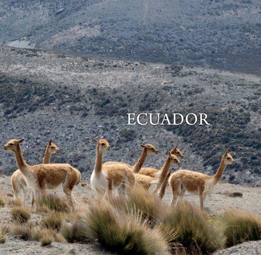 View Ecuador Mini by Alessandro Muiesan