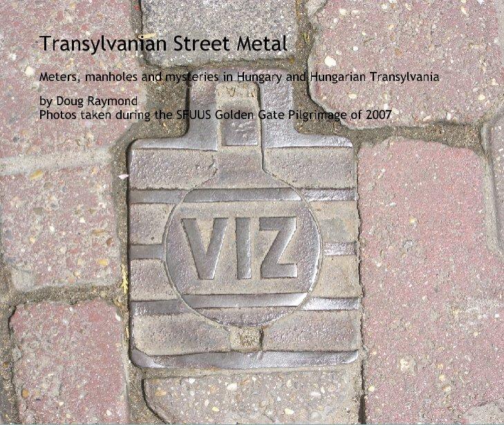 View Transylvanian Street Metal by Doug Raymond