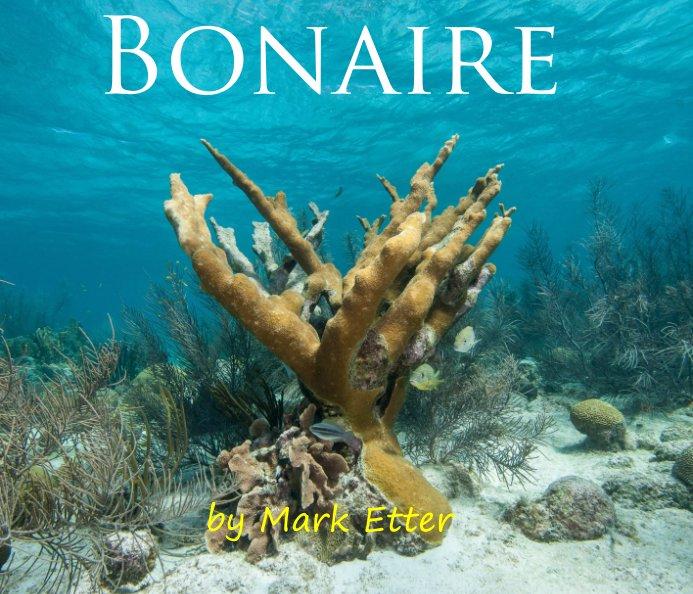 View Bonaire 2013 by Mark Etter