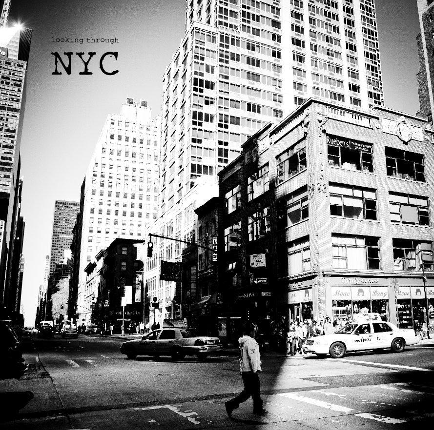 Visualizza looking through NYC di crono