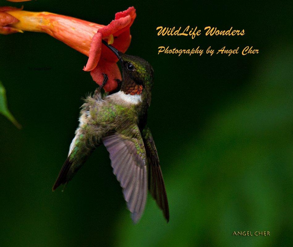 Bekijk WildLife Wonders Photography by Angel Cher op Angel Cher