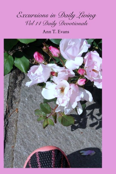 View Excursions in Daily Living Vol 14 Daily Devotionals by Ann T. Evans