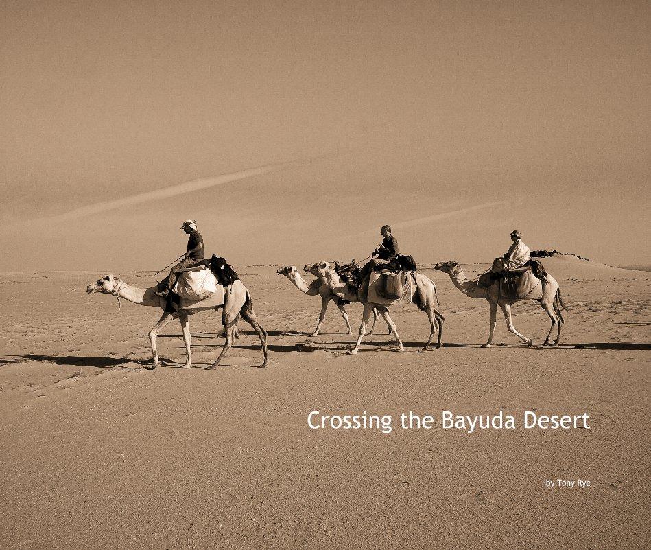 View Crossing the Bayuda Desert by Tony Rye