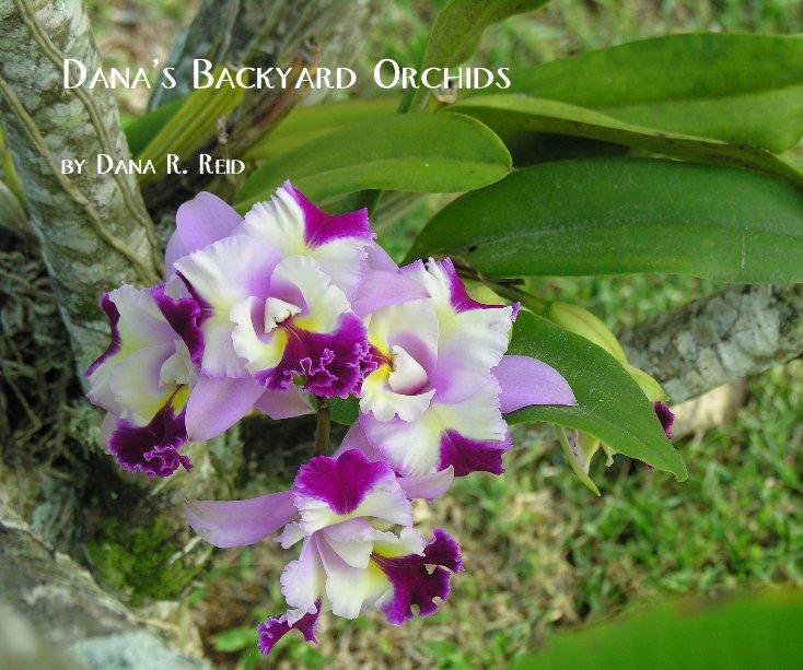 View Dana's Backyard Orchids by Dana R. Reid