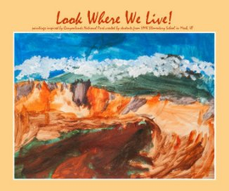 Look Where We Live! - Arts & Photography Books photo book