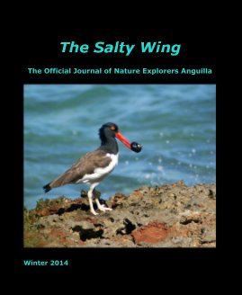 The Salty Wing Winter 2014 - Travel photo book