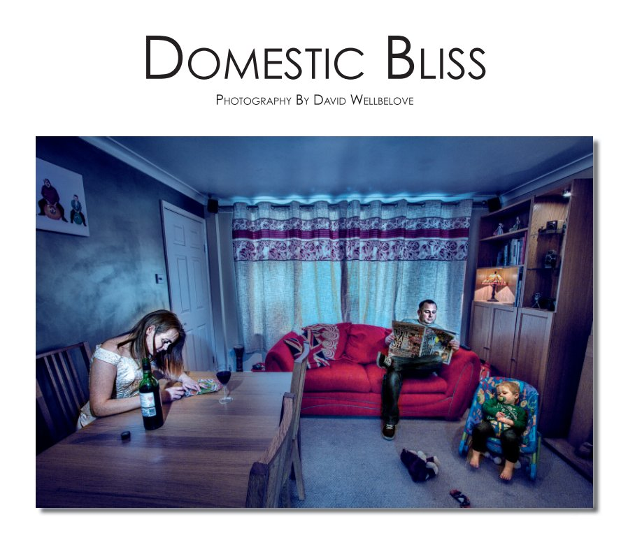 View Domestic Bliss by David Wellbelove