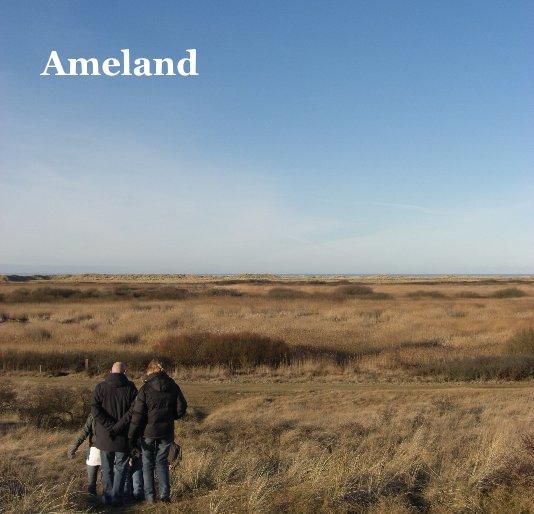 View Ameland by djevrie