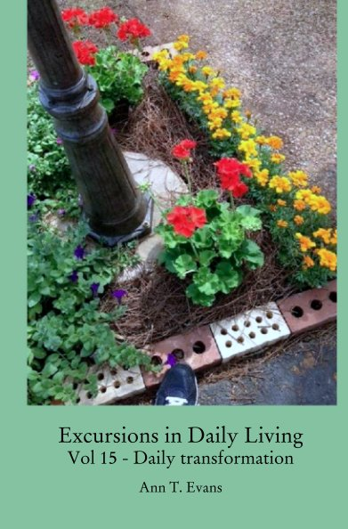 View Excursions in Daily Living  Vol 15 - Daily transformation by Ann T. Evans