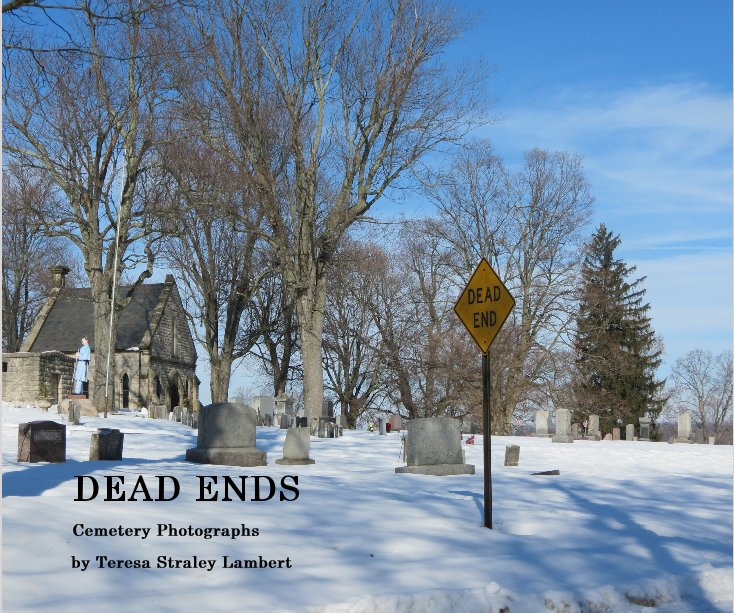 View DEAD ENDS by Teresa Straley Lambert