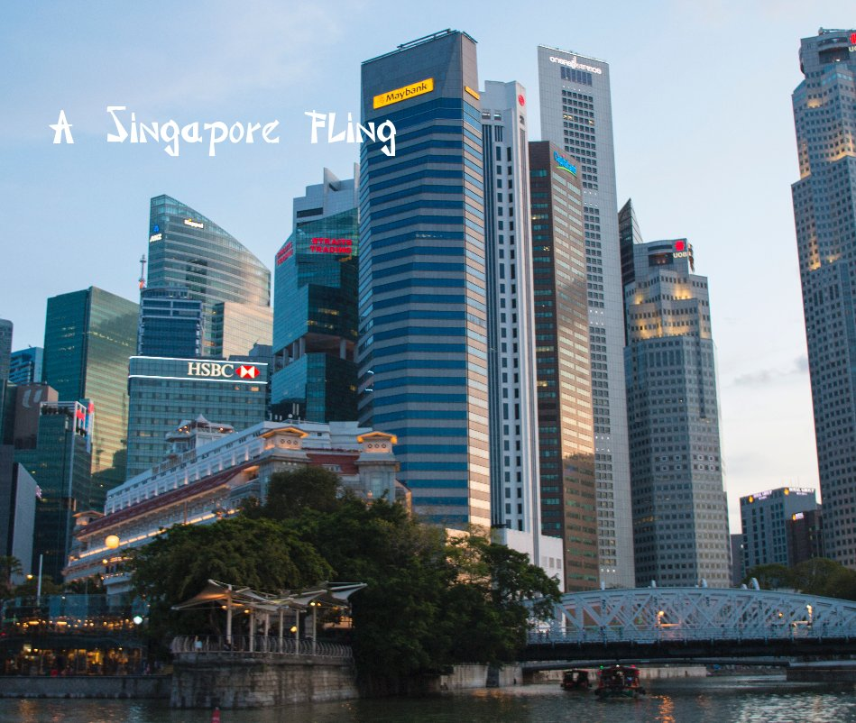 View A Singapore Fling by papillon2020