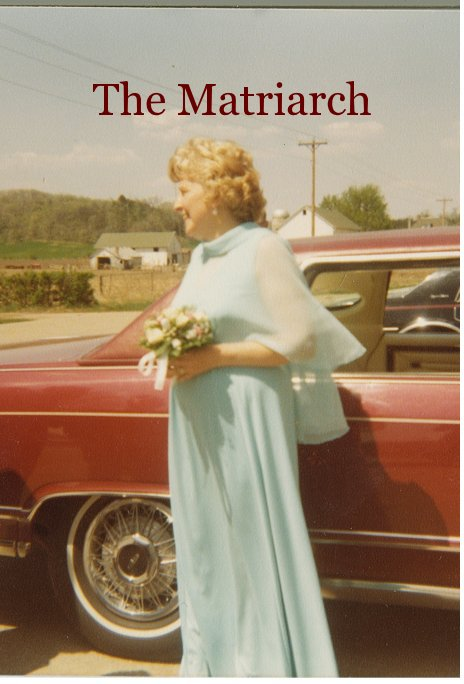 View The Matriarch by Lynette Diehl and Jennifer Laughnan