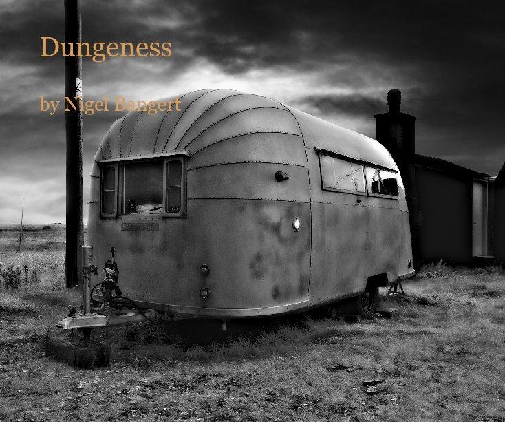 View Dungeness by Nigel Bangert