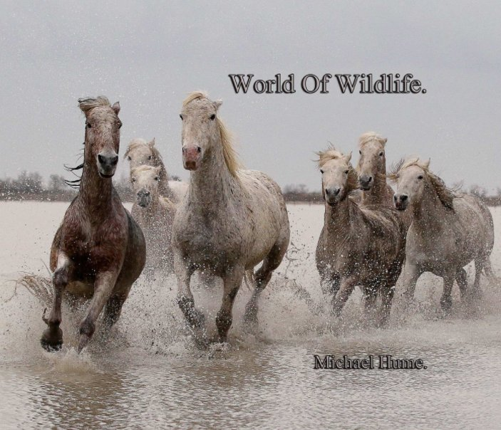 View World Of Wildlife. by Michael Hume