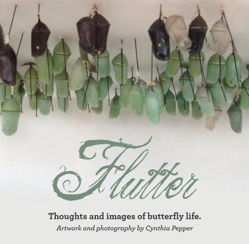 View Flutter by Cynthia Pepper