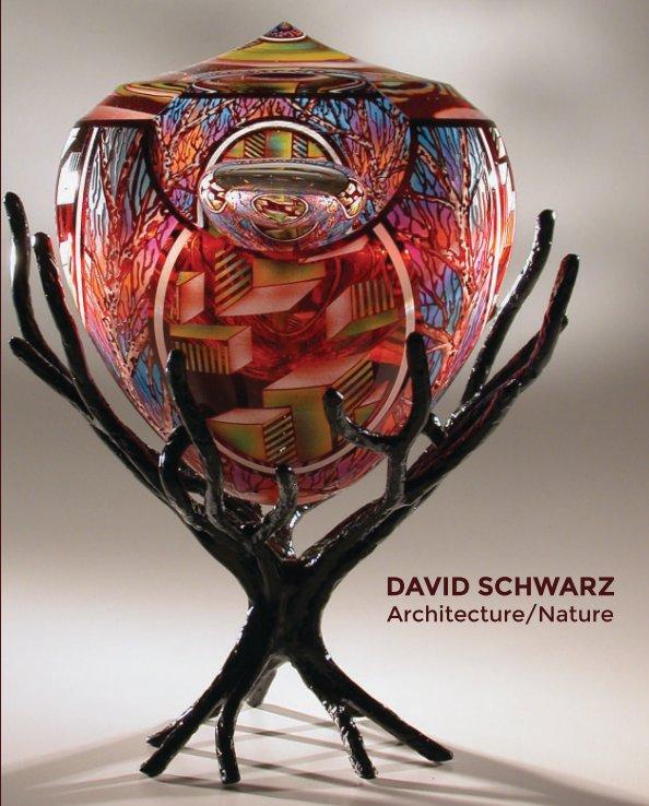 View David Schwarz by Ken Saunders Gallery