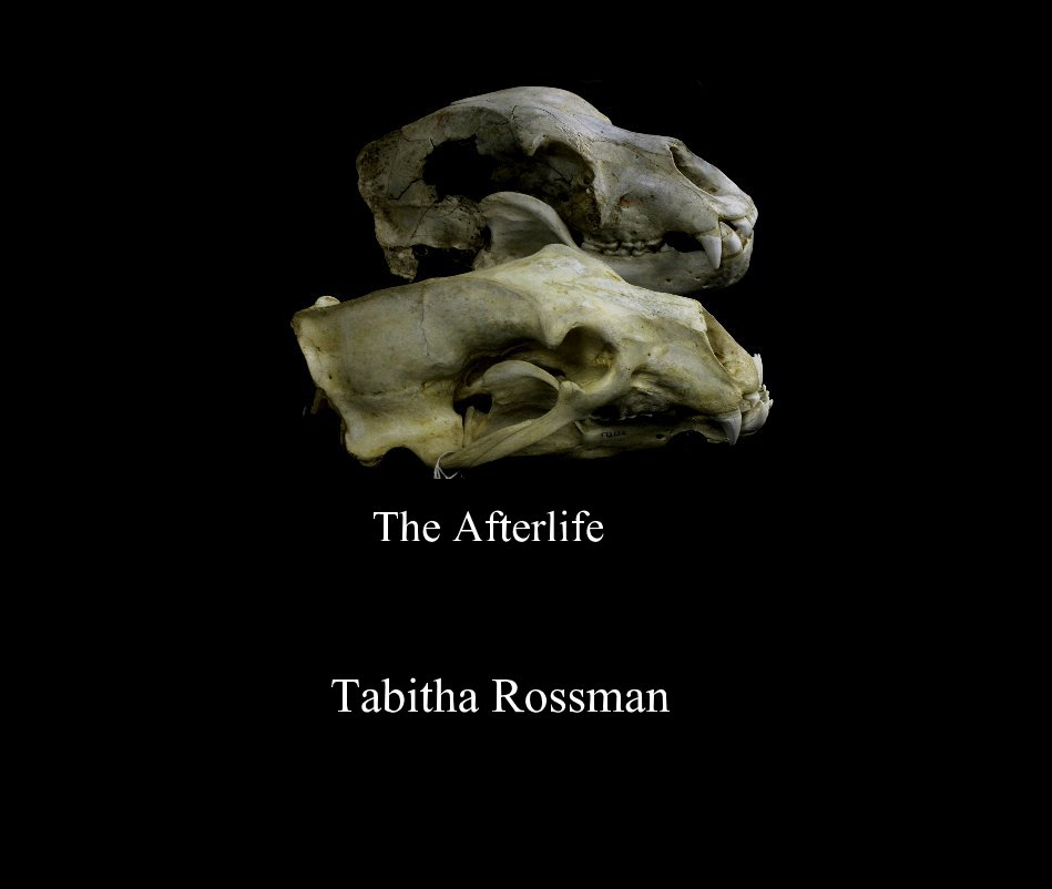 View The Afterlife by Tabitha Rossman