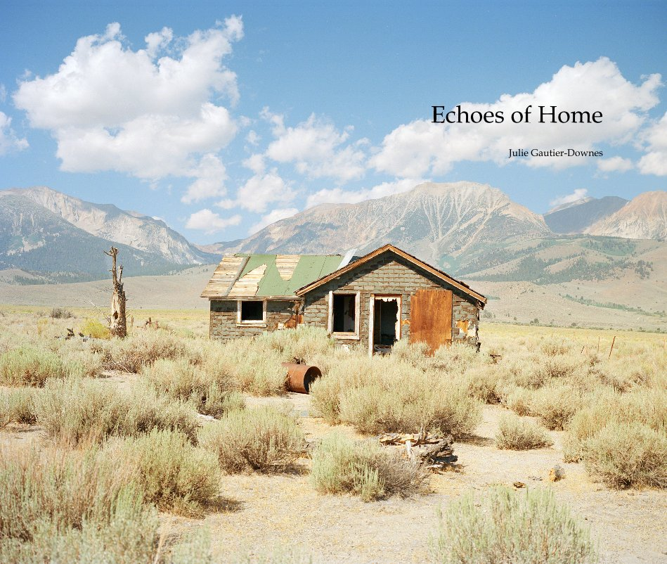 View Echoes of Home by Julie Gautier-Downes
