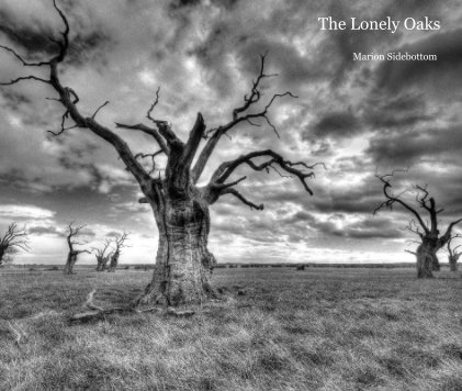 The Lonely Oaks (Large Format) - Arts & Photography Books photo book