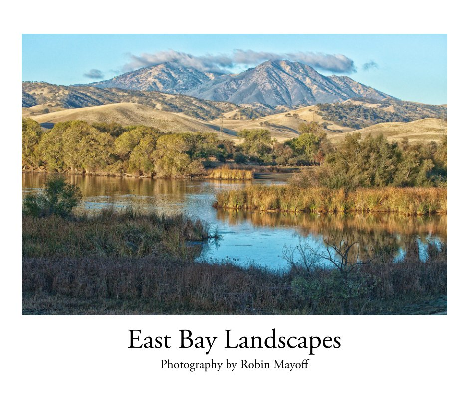 View Landscapes of the East Bay (Large) by Robin Mayoff