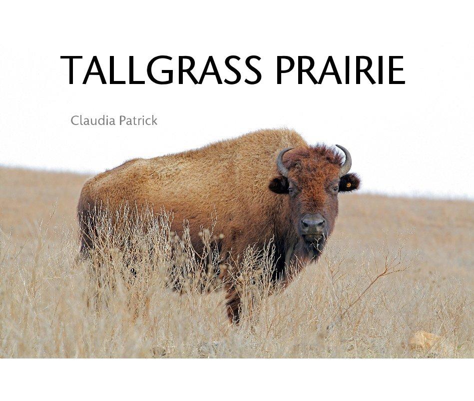 View TALLGRASS PRAIRIE by Claudia Patrick