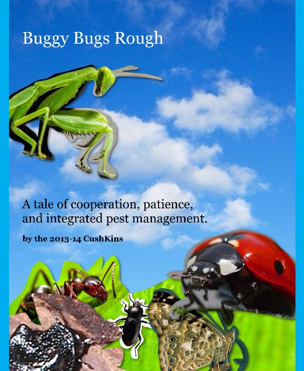 View Buggy Bugs Rough by the 2013-14 CushKins