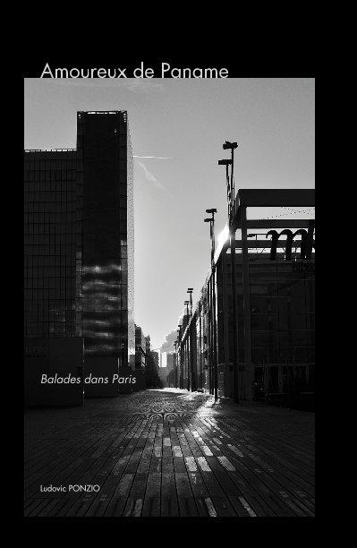 View Amoureux de Paname Balades dans Paris by Ludovic PONZIO