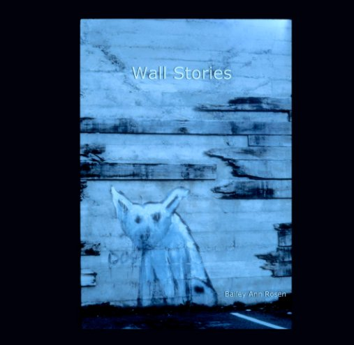 View Wall Stories by Bailey Ann Rosen