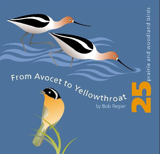 View from Avocet to Yellowthroat by Bob Regier