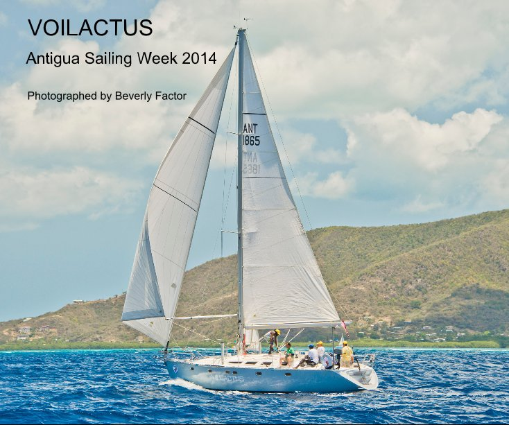 View VOILACTUS in Antigua 10 x 8 by Photographed by Beverly Factor