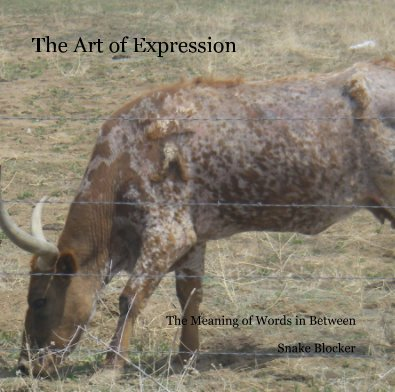The Art of Expression - Poetry photo book