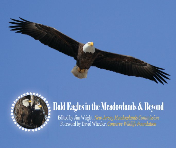 View Bald Eagles in the Meadowlands & Beyond - Soft by Jim Wright/NJMC