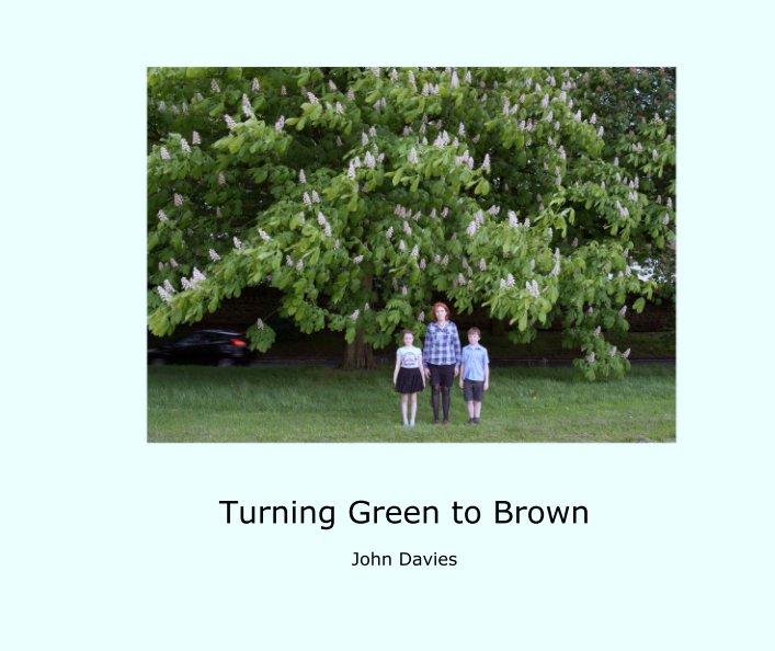 View Turning Green to Brown by John Davies
