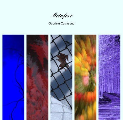 View Metafore by Gabriela Casineanu