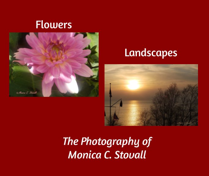 View Flowers and Landscapes by Monica C. Stovall